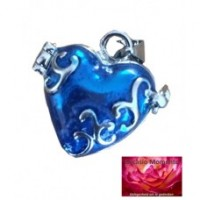 Dieren Asmedaillon Blauw Hart Design