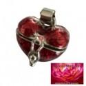 Dieren Asmedaillon Memory Box Rood Hart Design